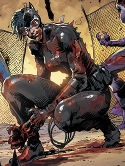 Catwoman DCeased.png