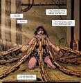 Wonder Woman 0243
