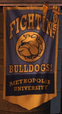 Metropolis University Bulldogs