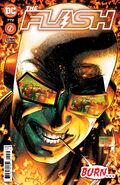 The Flash Vol 1 772