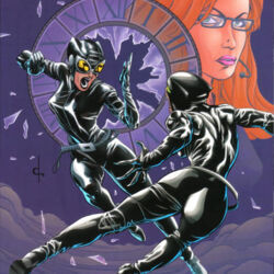 Birds of Prey: Catwoman/Oracle