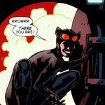 Catwoman 0062.jpg
