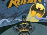 Robin Vol 2 14