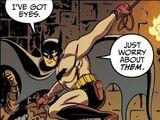 Bruce Wayne (Strange Visitor)