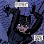 Catwoman 0031.jpg