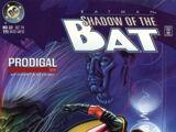Batman: Shadow of the Bat Vol 1 33