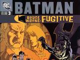 Batman: Bruce Wayne - Fugitive Vol 3 (Collected)