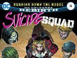 Suicide Squad Vol 5 14