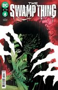 The Swamp Thing Vol 1 2
