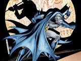 Batman Confidential Vol 1 27