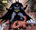 Batman 0361