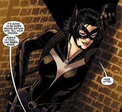 Catwoman Earth 2 001.jpg