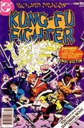 Richard Dragon Kung-Fu Fighter Vol 1 17