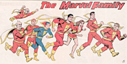 Marvel Family Earth-S 001