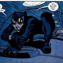 Catwoman 0051.jpg