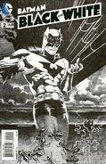 Batman Black and White Vol 1 2