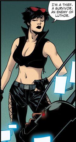Selina Kyle Gotham City Garage 001.jpg