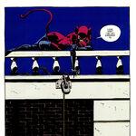 Catwoman 0132.jpg