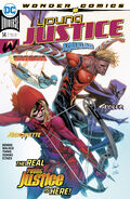 Young Justice Vol 3 14