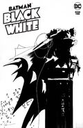 Batman Black and White Vol 2 2