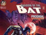 Batman: Shadow of the Bat Vol 1 32