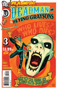 Flashpoint Deadman and the Flying Graysons Vol 1 3