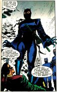 Catwoman Narrow Path 01