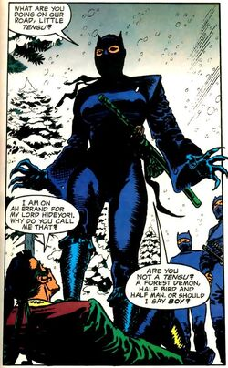 Catwoman Narrow Path 01.jpg