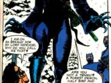 Catwoman (Narrow Path)