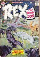Rex the Wonder Dog 31