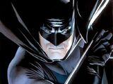 Bruce Wayne (New Earth)/Gallery