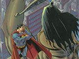 Batman Chronicles Vol 1 7