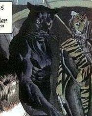 Huntress (Earth-22)