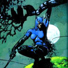 Catwoman 0016.jpg