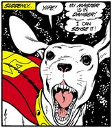 Krypto Pocket Universe 0001