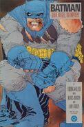 Batman - Dark Knight Returns 2