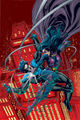 Nightwing Huntress Vol 1 2 Textless