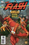 Flash vol 2 242