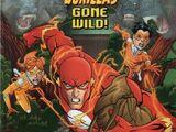 The Flash Vol 2 242