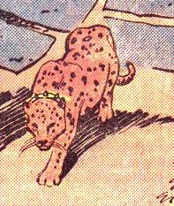 Merlin the Leopard (New Earth)