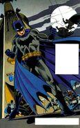 Batman Silent Tale of the Bat 001
