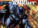 Batman: The Dark Knight Vol 2