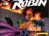 Robin Vol 2 35
