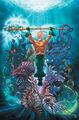 Aquaman Vol 8 46 Textless Variant