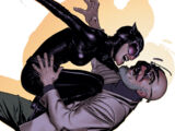 Catwoman Vol 3 49