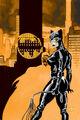 Detective Comics Vol 1 780 Textless