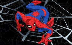 Spider-Man SSM.jpg