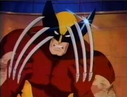 Wolverine PXM.jpg