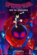 Spider-Man Into the Spider-Verse SP--dr Poster