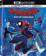 Spider-Man Into the Spider-Verse 4K